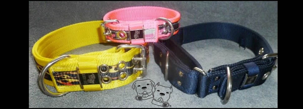 Collars in three widths to fit your dog.